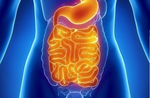 Disintossicazione-intestinale-per-pulizia-gastrica